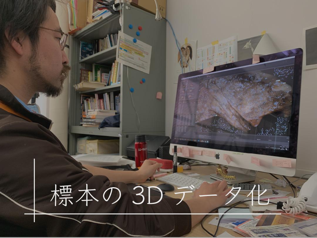 標本の3Dデータ化