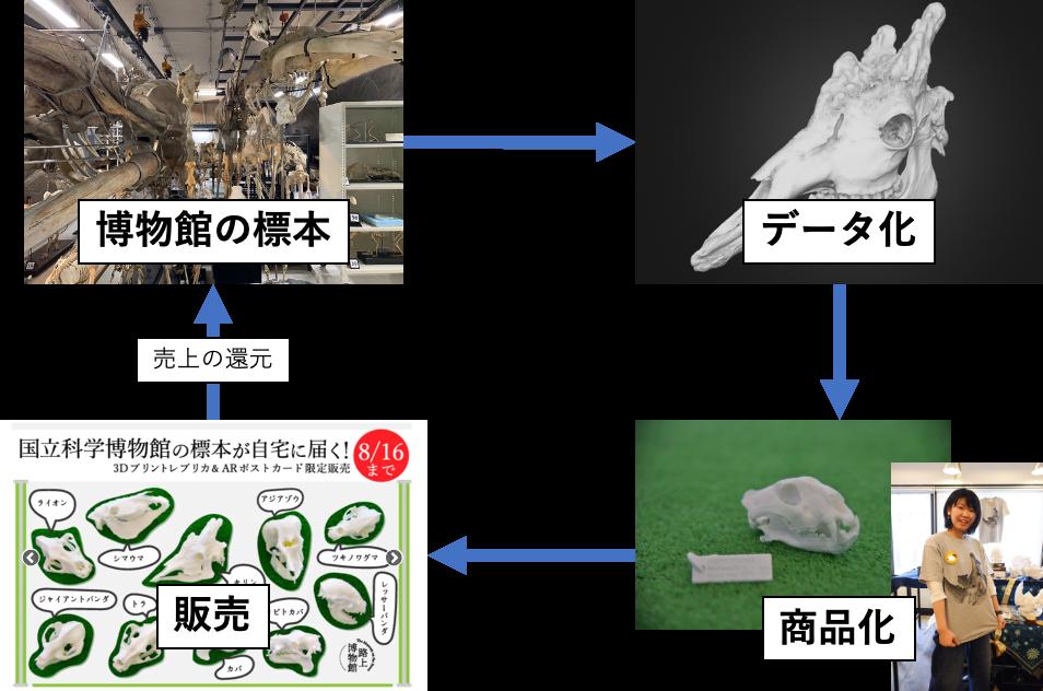 商品開発と博物館への還元