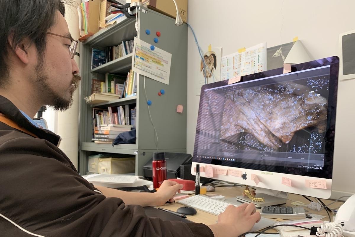 標本の3D計測・モデル製作事業の説明用画像