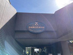茨城県立自然博物館
